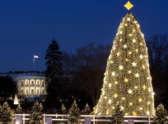Happy Holidays from Interim Homes–Washington, D.C. Events